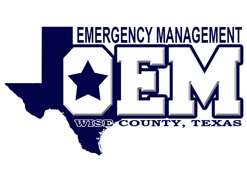OEM WISE CO LOGO